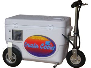 Cruzin Cooler Electric Scooter